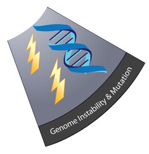 GenomeSlice